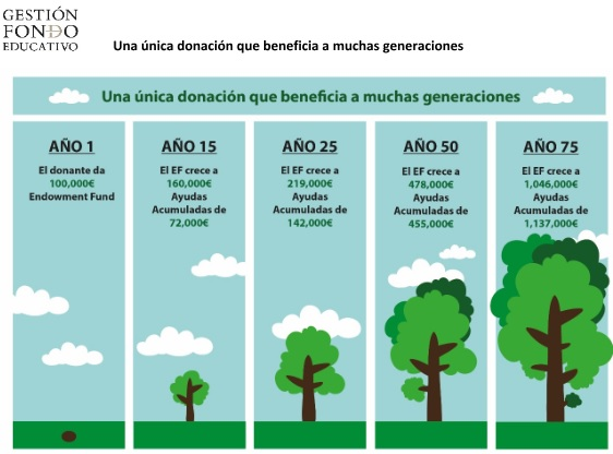 gestion_fondo_educativo_arbol