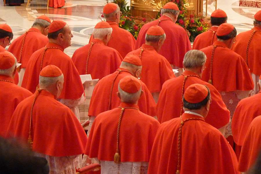 cardenales_2012