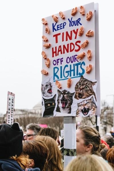 Manifestación animalista.