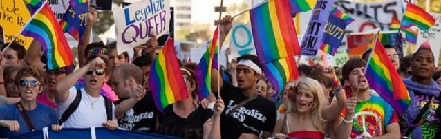 Los grupos LGTB no se conforman con el matrimonio gay, quieren más
